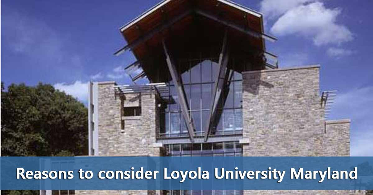 50 50 Profile Loyola University Maryland Do It Yourself